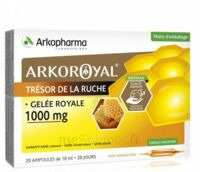 Arkoroyal Gelée royale 1000 mg Solution buvable 20 Ampoules/10ml à DIJON